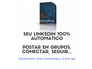 LinkedPost programa para divulgar no Linkedin Automatizar funções